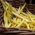 Nasiona fasoli szparagowej