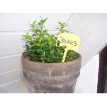 Etykiety do oznaczania roślin 12,5 cm - 10 szt.
