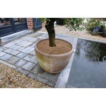 Osłona przed zimnem na korzenie z maty kokosowej - śr. 30 cm - 3 szt.