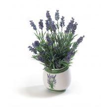 Doniczka ozdobna do uprawy lawendy w domu + nasiona GRATIS