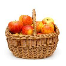 Jabłoń Topaz drzewka