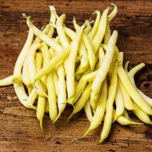 Fasola szparagowa nasiona ekologiczne