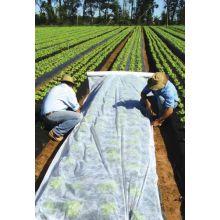 Agrowłóknina wiosenna - ochrona roślin dla zdrowych plonów - 3,20 m x 5,00 m