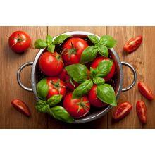 Pomidor wysoki – Adam F1
