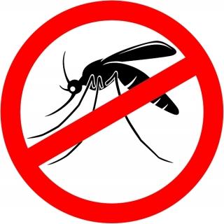 Mieszanka roślin odstraszających komary