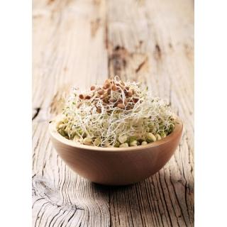Nasiona na kiełki - mieszanka azjatycka
