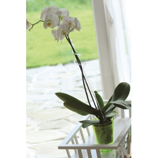 Podpórka do storczyka i innych kwiatów - spirala różowa