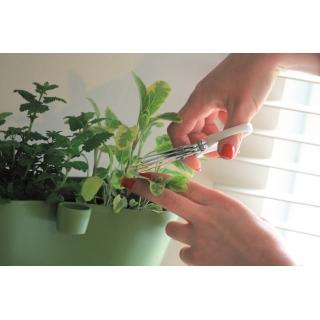 Nożyczki do ziół z potrójnym ostrzem - Herbs Cut - białe