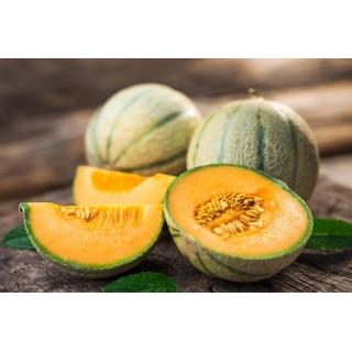 Melon Bosman