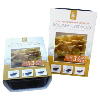 Boczniak cytrynowy - kompletny zestaw z miniszklarenką do uprawy w domu - 3 l