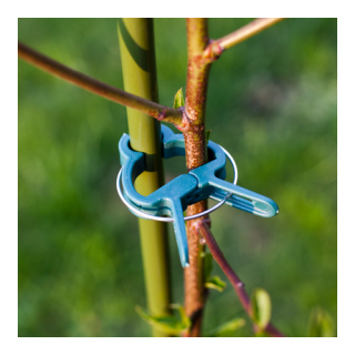 Klipsy do spinania roślin - 8 x duże + 12 x małe