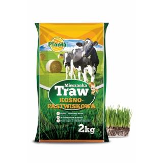 Mieszanka traw kośno-pastwiskowych - łąka bez motylkowych - B2 - 2 kg