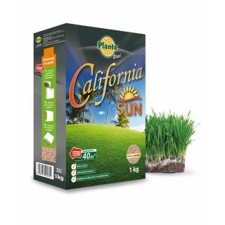 California Sun - mieszanka traw gazonowych na tereny słoneczne i suche - Planta - 1 kg