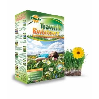Trawnik kwiatowy - mieszanka traw gazonowych oraz kwiatów - 0,5 kg