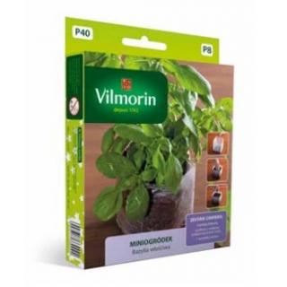 Miniogródek - Bazylia właściwa - mini zestaw do uprawy w domu