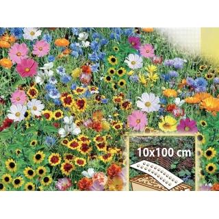 Tęczowa Rabatka - mieszanka kwiatów jednorocznych do skrzynek, na obwódki - Mata 10x100cm