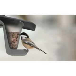 Karmnik dla ptaków z możliwością powieszenia na sznurku lub gałęzi - Birdyfeed Double - antracyt
