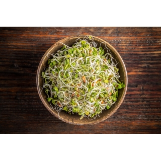 BIO Nasiona na kiełki - Mieszanka pikantna - Certyfikowane nasiona ekologiczne