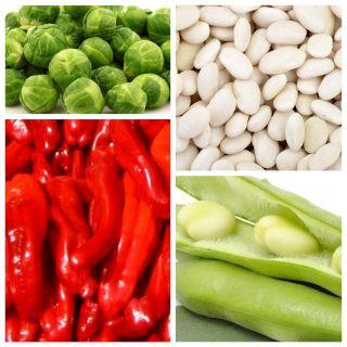 Warzywa wspomagające metabolizm - zestaw 4 odmian nasion