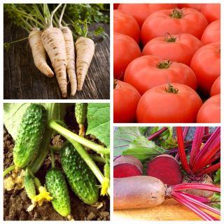 Warzywa oczyszczające organizm - zestaw 4 odmian nasion