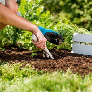 Widełki ogrodnicze - PASTEL - pastelowe beżowe - CELLFAST