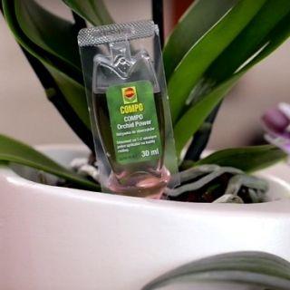 Odżywka orchid power - do storczyków - Compo - 50 x 30 ml