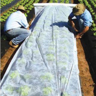 Agrowłóknina wiosenna - ochrona roślin dla zdrowych plonów - 3,20 m x 10,00 m