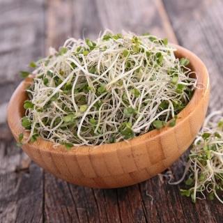 BIO Nasiona na kiełki - Brokuł - Certyfikowane nasiona ekologiczne