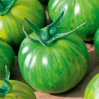 Pomidor Green Zebra - gruntowy wysoki