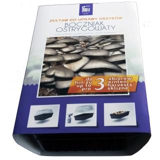 Boczniak ostrygowaty - kompletny zestaw z miniszklarenką do uprawy w domu - 3 l
