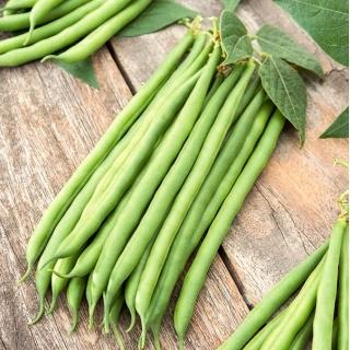 Fasola Esterka - smaczne, bezwłókniste, zielone strąki