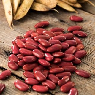 Fasola Wawelska - na suche nasiona