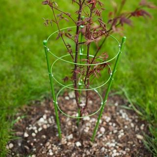 Podpora pierścieniowa do roślin - 0,5 m - 3 szt.
