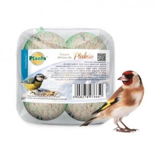 Pokarm zimowy dla ptaków - zestaw małych kulek dla sikorek - Planta - 4 sztuki