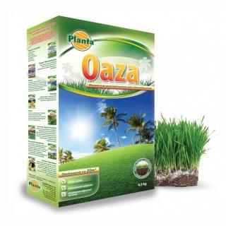 Oaza - mieszanka traw na tereny suche i nasłonecznione - Planta - 2 kg
