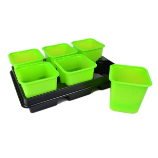 Doniczka kwadratowa 8x8 cm - zielona - 12 szt. + dwie tacki