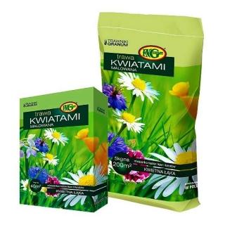 Mieszanka traw - Kwiatami Malowana - 1 kg