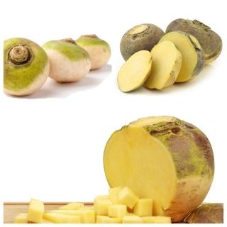 Brukiew - zestaw 3 odmian nasion warzyw