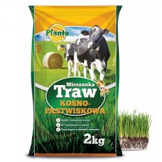 Mieszanka traw kośno-pastwiskowych - łąka bez motylkowych - B1 - 2 kg