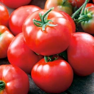 Pomidor Bruno F1 - szklarniowy, dobrze wybarwiony, typu Baron