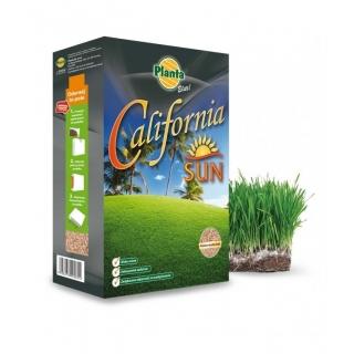 California Sun - mieszanka traw gazonowych na tereny słoneczne i suche - Planta - 5 kg - na 200 m²