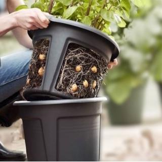 Doniczka do uprawy ziemniaków z możliwością łatwego wyjęcia bulw - śr. 30 cm