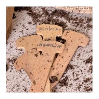 Etykiety drewniane do podpisywania roślin - ekologiczne - 20 szt.