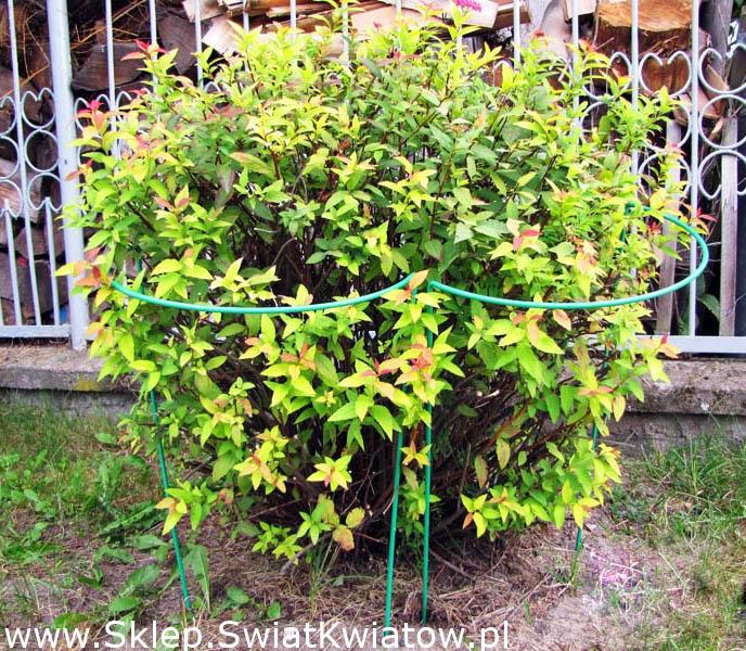 Podpora Do Roślin Półokrągła Metalowa 35 Cm